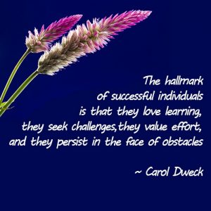 The hallmark of successful individualsx500