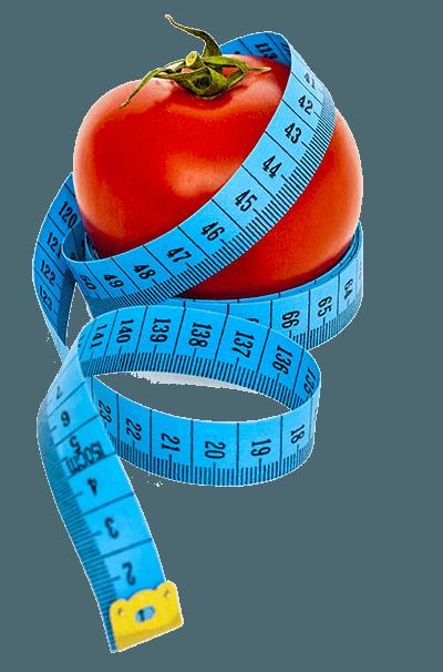 online diet courses