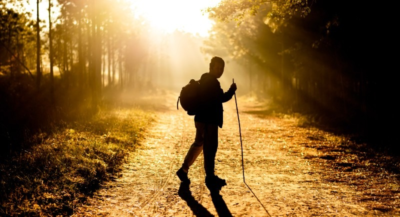 walking in the sunshine for your health